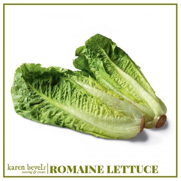 KBC-Grocery-Romaine-Lettuce